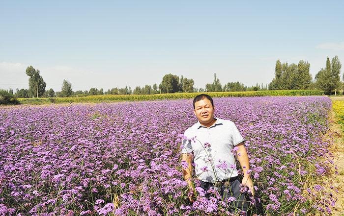 花种生产基地