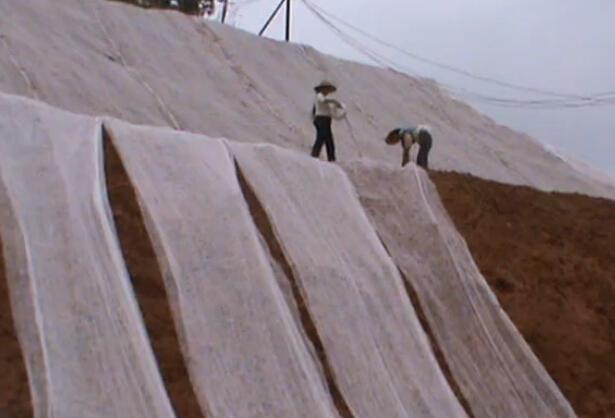 边坡绿化工程施工过程——客土泵湿喷盖布